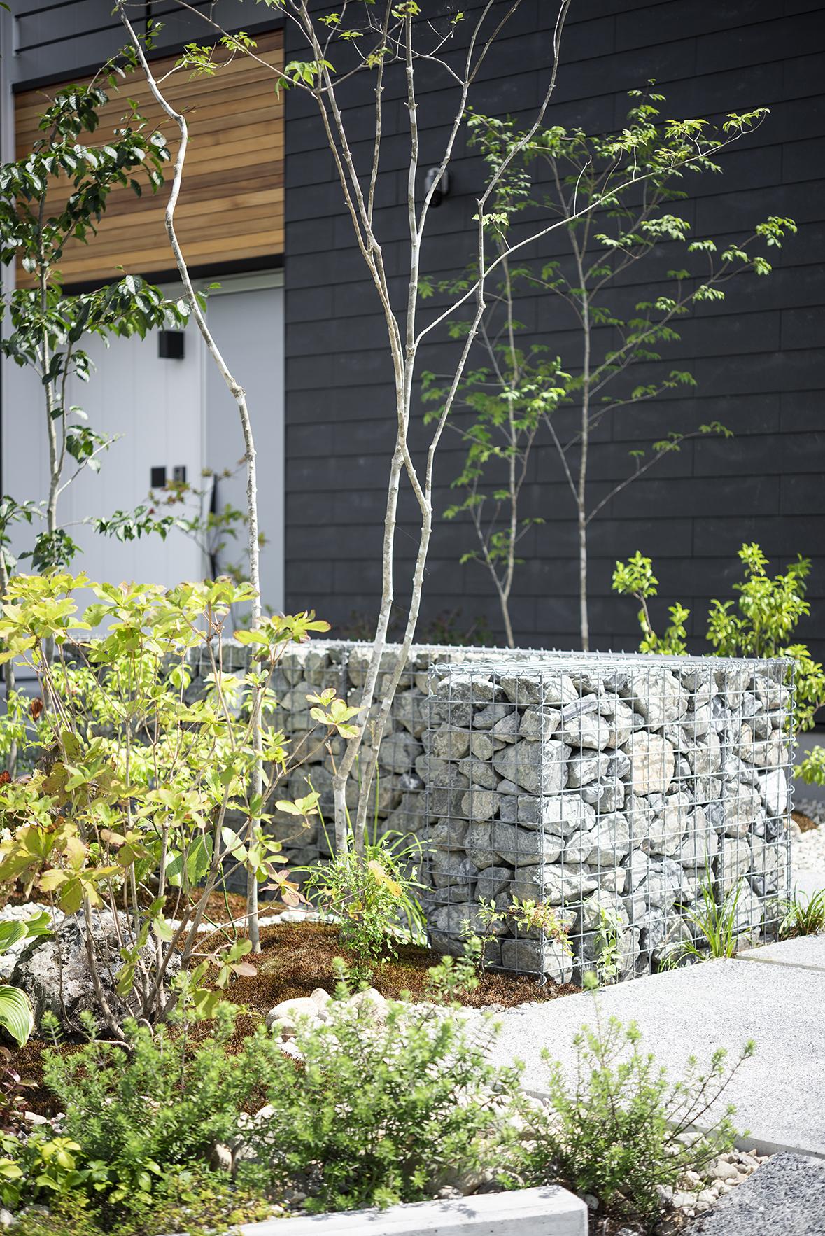 住まいに寄り添う雑木の庭